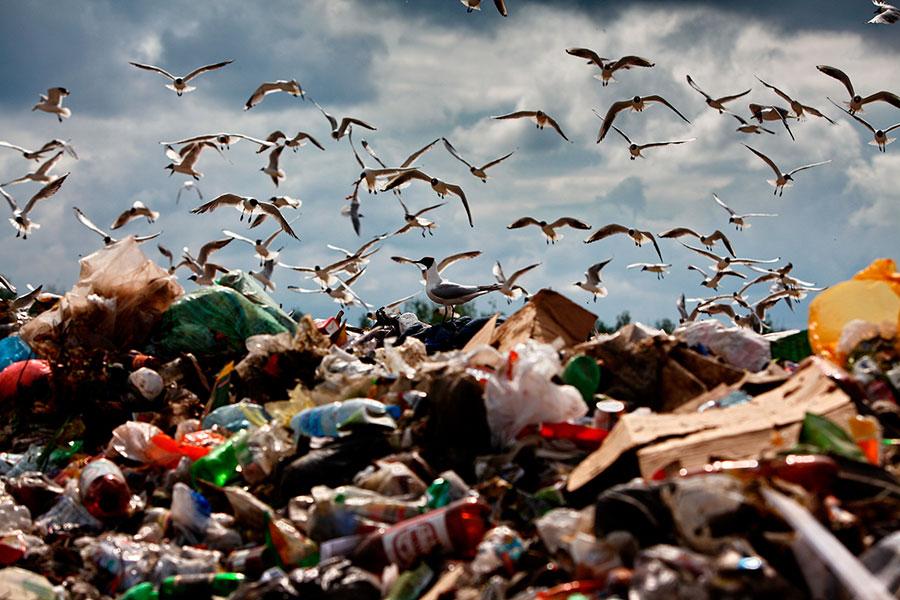 Захоронение твердых бытовых отходов