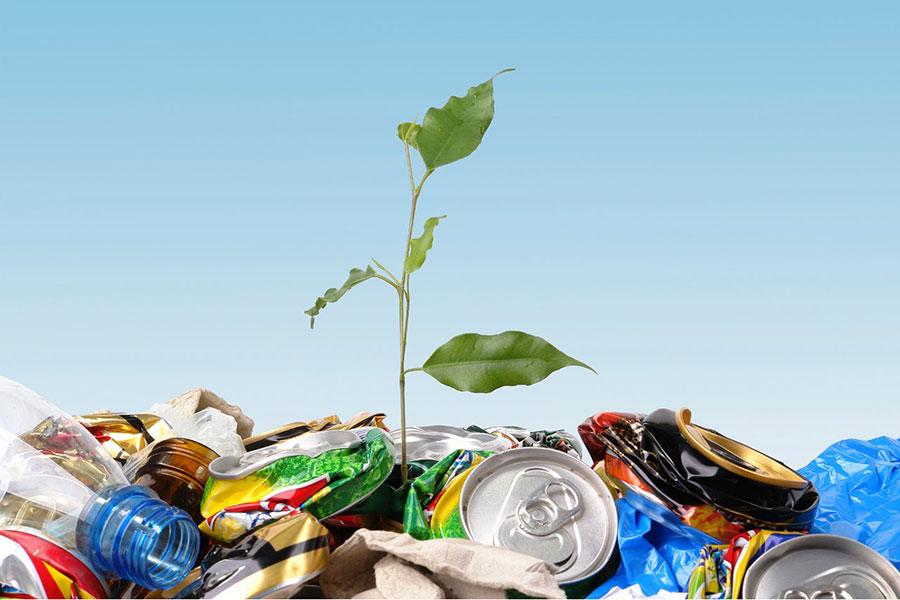 Переработка твердых бытовых отходов
